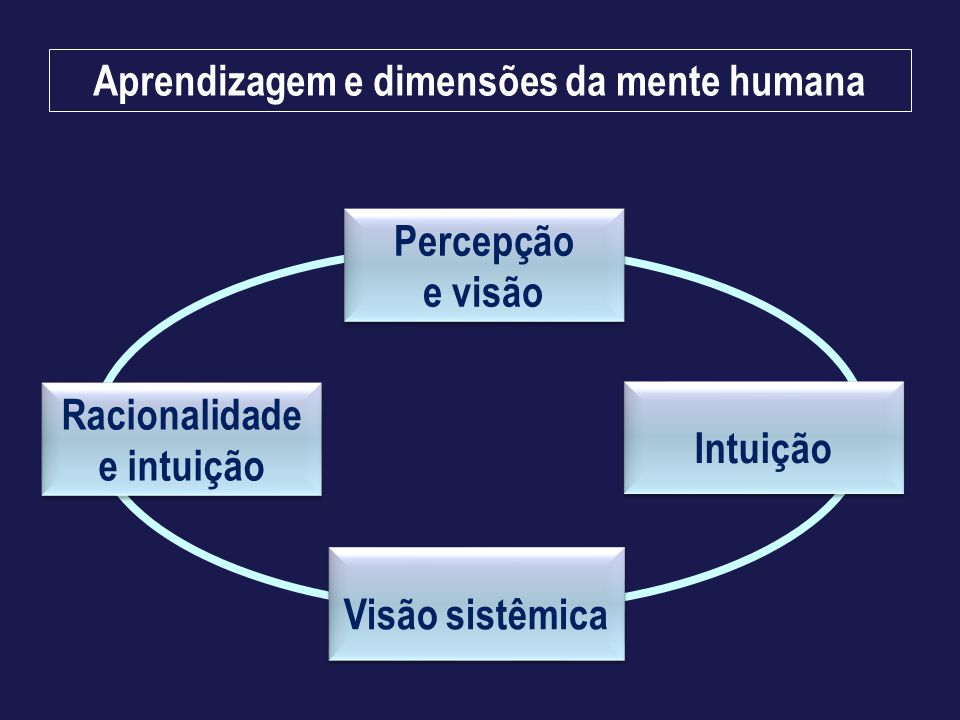 Aprendizagem e dimensões da mente humana Percepção e visão Visão sistêmica Intuição Racionalidade e intuição