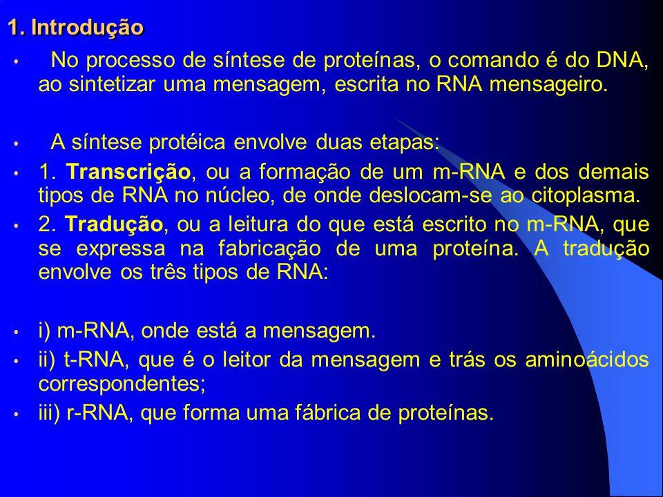 1. Introdução No processo de síntese de proteínas, o comando é do DNA, ao sintetizar uma mensagem, escrita no RNA mensageiro. A síntese protéica envol