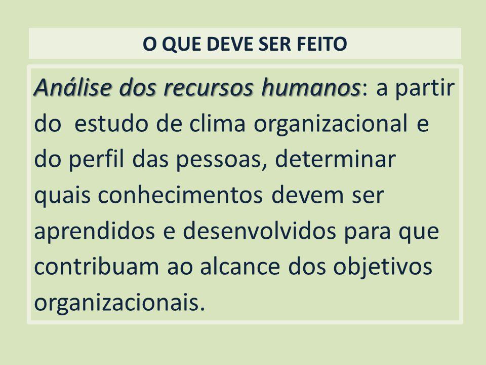 O QUE DEVE SER FEITO Análise dos recursos humanos Análise dos recursos humanos: a partir do estudo de clima organizacional e do perfil das pessoas, de