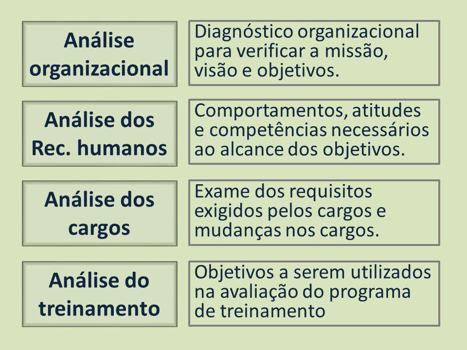 Análise organizacional Análise dos Rec. humanos Análise dos cargos Análise do treinamento Diagnóstico organizacional para verificar a missão, visão e