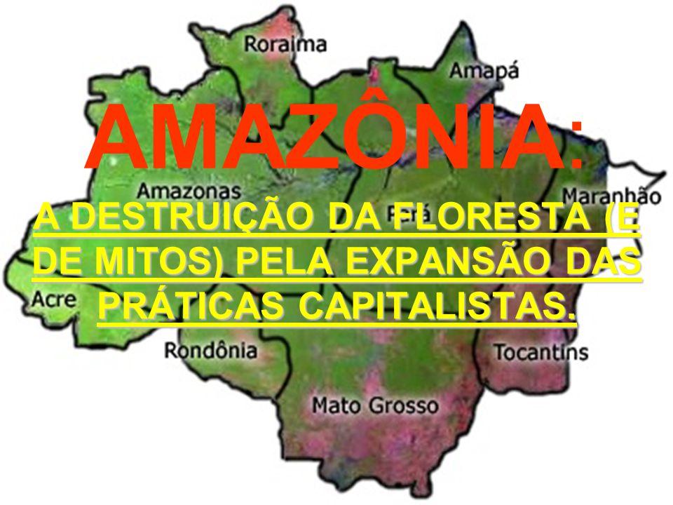 A DESTRUIÇÃO E AFIRMAÇÃO DE MITOS SOBRE A AMAZÔNIA A AMAZÔNIA É O PULMÃO DO MUNDO.