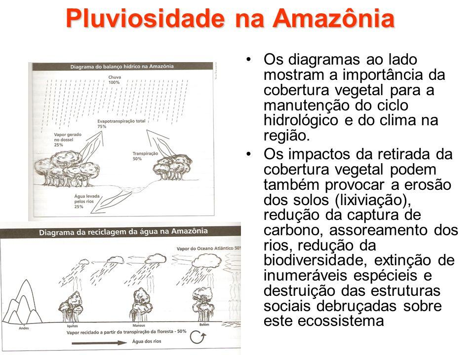 Pluviosidade na Amazônia Os diagramas ao lado mostram a importância da cobertura vegetal para a manutenção do ciclo hidrológico e do clima na região.