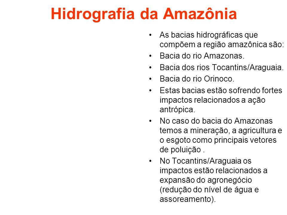 Hidrografia da Amazônia As bacias hidrográficas que compõem a região amazônica são: Bacia do rio Amazonas. Bacia dos rios Tocantins/Araguaia. Bacia do