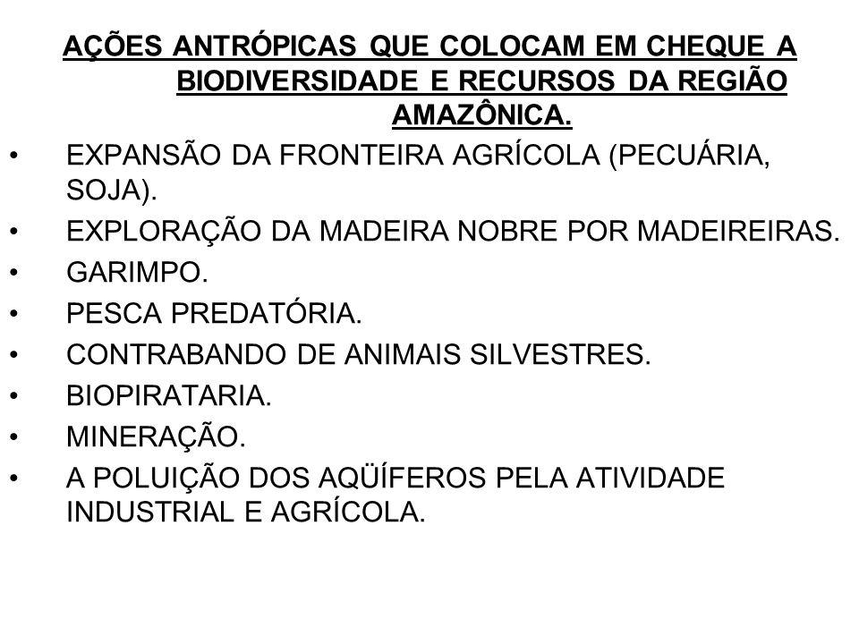 AÇÕES ANTRÓPICAS QUE COLOCAM EM CHEQUE A BIODIVERSIDADE E RECURSOS DA REGIÃO AMAZÔNICA. EXPANSÃO DA FRONTEIRA AGRÍCOLA (PECUÁRIA, SOJA). EXPLORAÇÃO DA