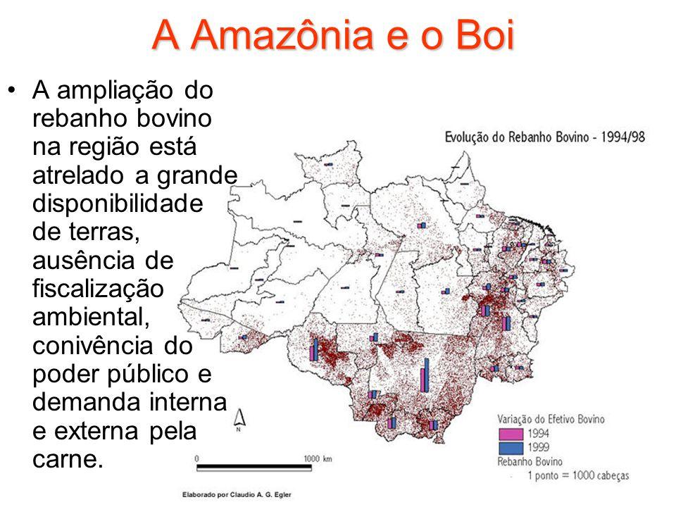 A Amazônia e o Boi A ampliação do rebanho bovino na região está atrelado a grande disponibilidade de terras, ausência de fiscalização ambiental, coniv