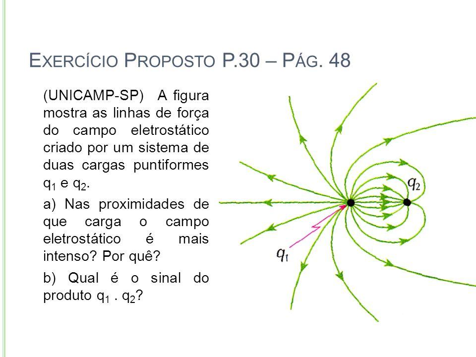 E XERCÍCIO P ROPOSTO P.30 – P ÁG. 48 Instituto Educacional Imaculada 22 (UNICAMP-SP) A figura mostra as linhas de força do campo eletrostático criado