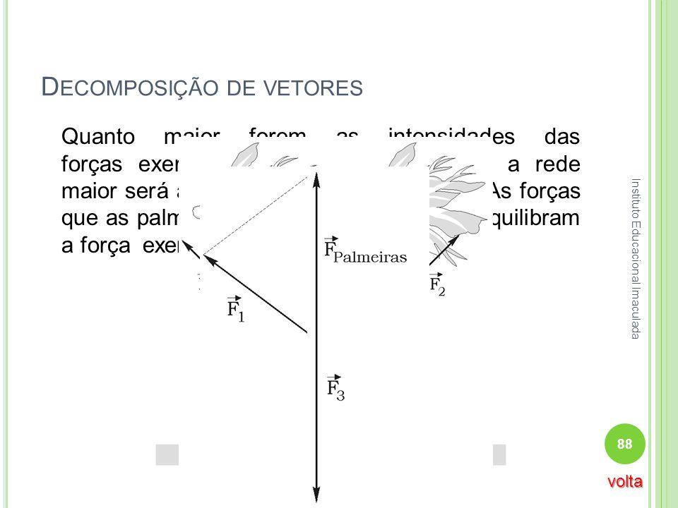 D ECOMPOSIÇÃO DE VETORES Quanto maior forem as intensidades das forças exercidas pelas palmeiras sobre a rede maior será a probabilidade dela se parti