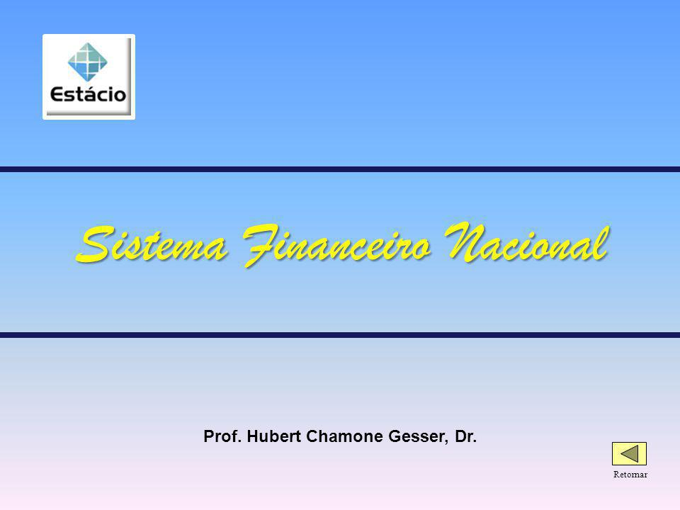 Prof. Hubert Chamone Gesser, Dr. Retornar Sistema Financeiro Nacional