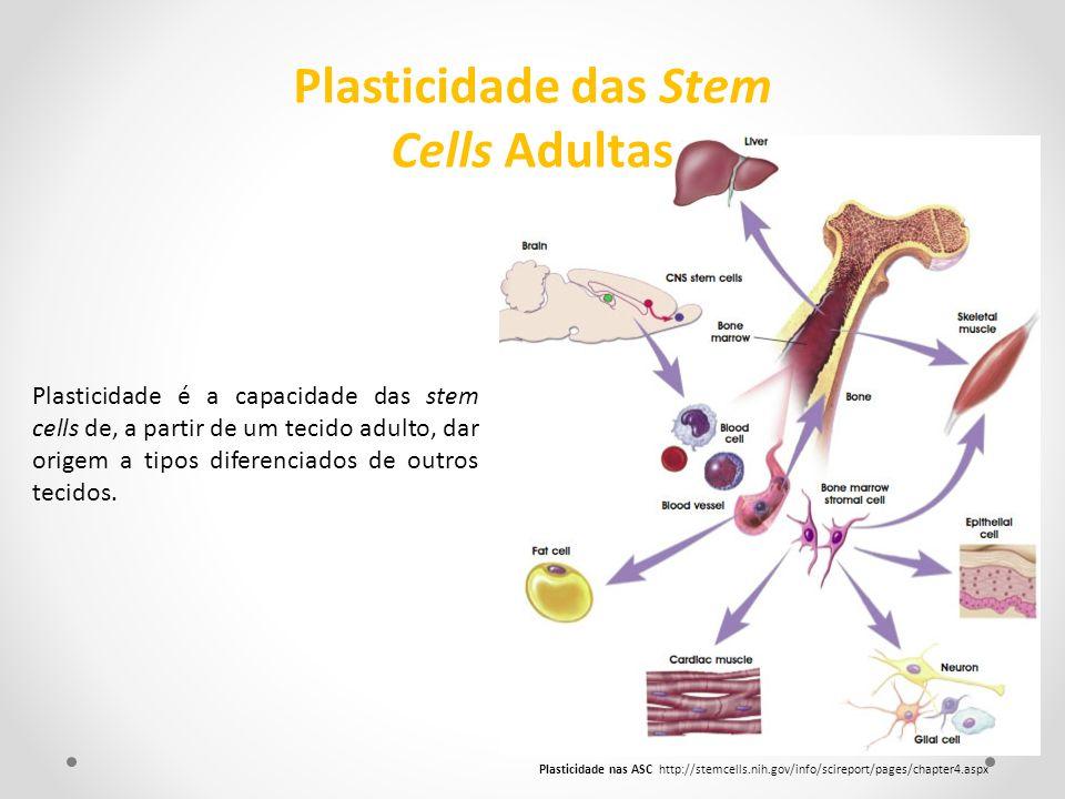 Plasticidade é a capacidade das stem cells de, a partir de um tecido adulto, dar origem a tipos diferenciados de outros tecidos. Plasticidade nas ASC
