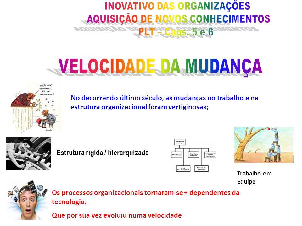 Estrutura rígida / hierarquizada Trabalho em Equipe Os processos organizacionais tornaram-se + dependentes da tecnologia. Que por sua vez evoluiu numa