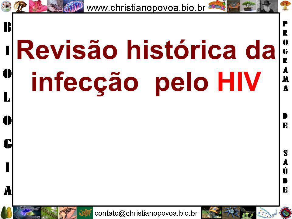 9. AIDS (Vírus) Agente HIV (Human Immunodeficiency Virus), com 2 subtipos conhecidos : HIV-1 e HIV-2. Complicações/Consequências Doenças oportunística