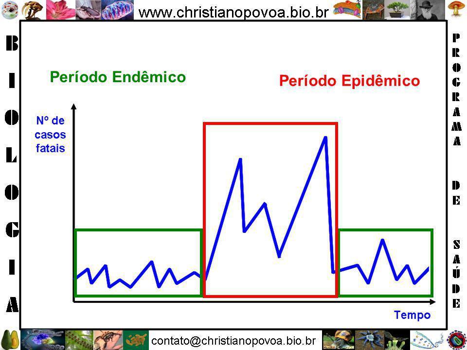 3.Linfogranuloma Venéreo Agente Chlamydia trachomatis.
