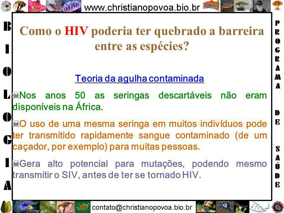 Como o HIV poderia ter quebrado a barreira entre as espécies.