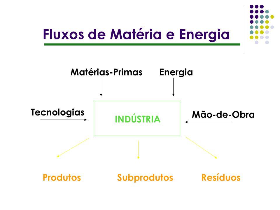 INDÚSTRIA Matérias-PrimasEnergia ResíduosProdutos Mão-de-Obra Tecnologias Subprodutos Fluxos de Matéria e Energia