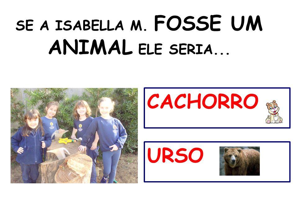 SE A ISABELLA M. FOSSE UM ANIMAL ELE SERIA... CACHORRO URSO