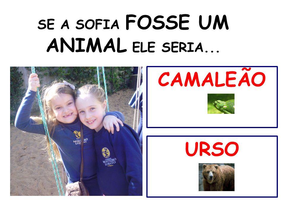 SE A SOFIA FOSSE UM ANIMAL ELE SERIA... CAMALEÃO URSO