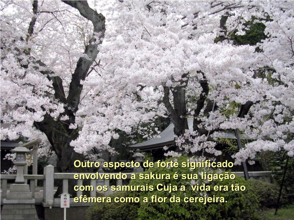 Outro aspecto de forte significado envolvendo a sakura é sua ligação com os samurais Cuja a vida era tão efêmera como a flor da cerejeira.