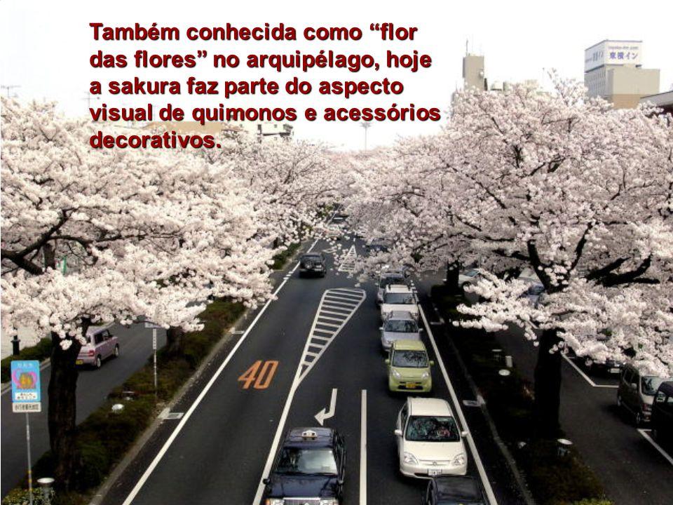 Também conhecida como flor das flores no arquipélago, hoje a sakura faz parte do aspecto visual de quimonos e acessórios decorativos.