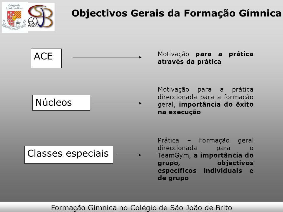 Objectivos Gerais da Formação Gímnica ACE Motivação para a prática através da prática Motivação para a prática direccionada para a formação geral, imp