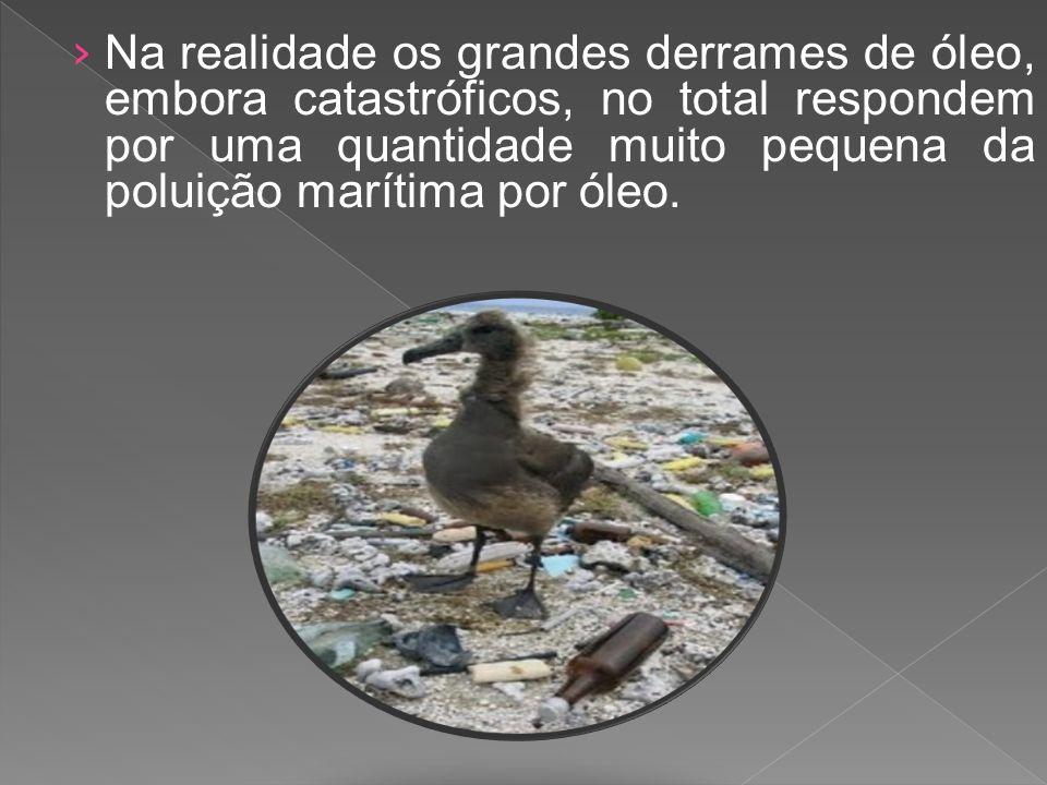 Na realidade os grandes derrames de óleo, embora catastróficos, no total respondem por uma quantidade muito pequena da poluição marítima por óleo.