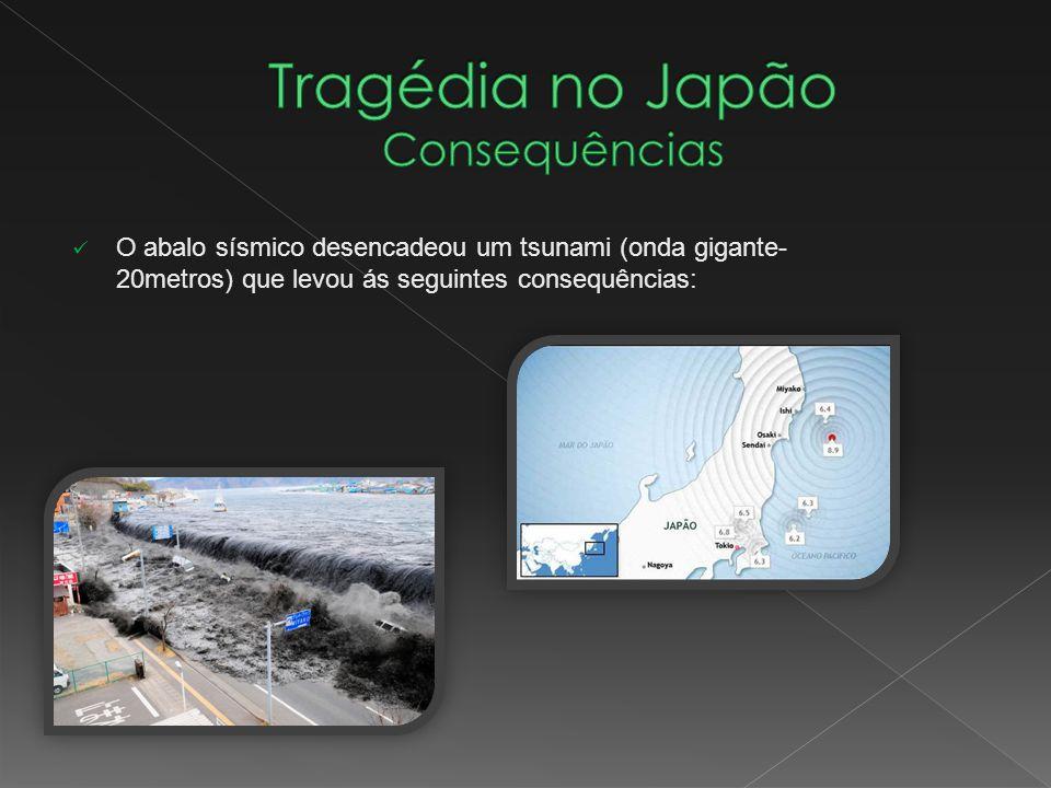 O abalo sísmico desencadeou um tsunami (onda gigante- 20metros) que levou ás seguintes consequências: