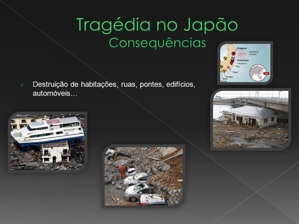 Destruição de habitações, ruas, pontes, edifícios, automóveis…