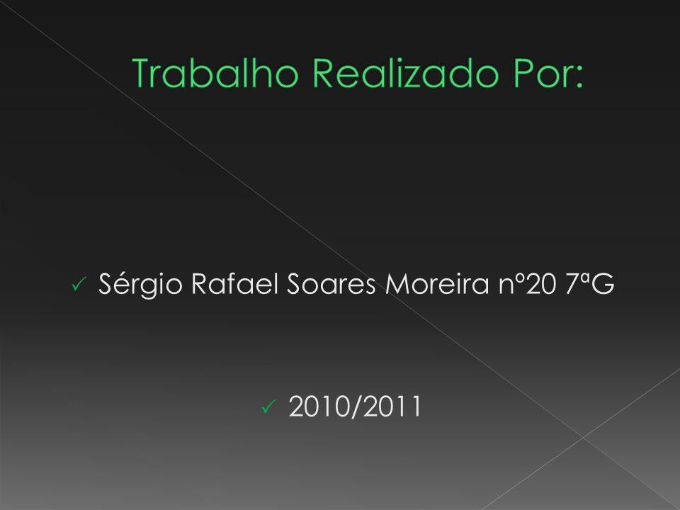 Sérgio Rafael Soares Moreira nº20 7ªG 2010/2011
