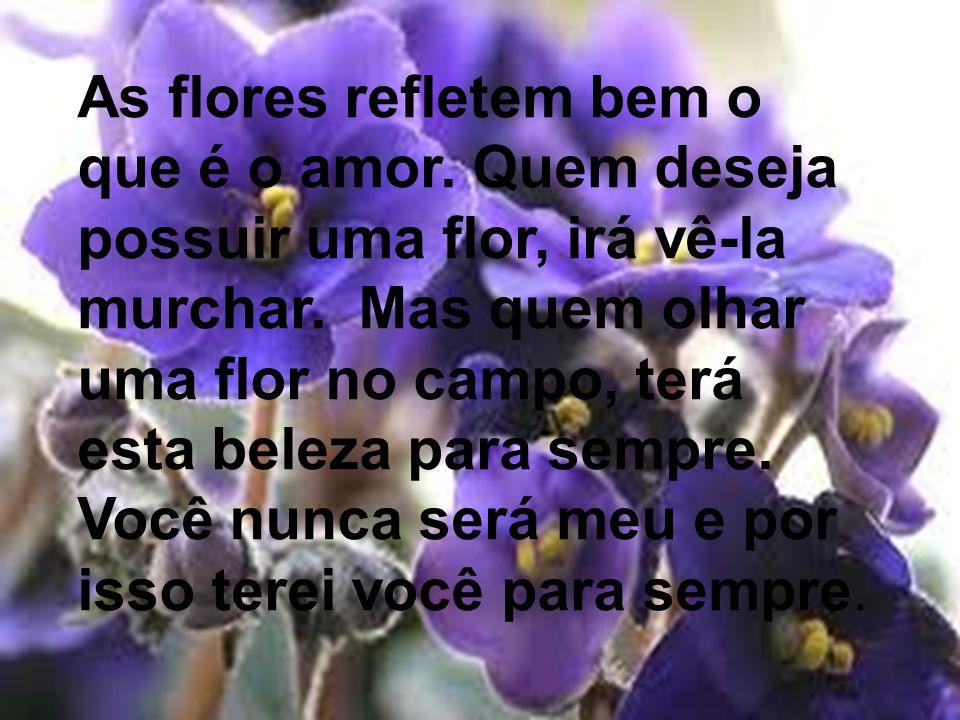 As flores refletem bem o que é o amor.Quem deseja possuir uma flor, irá vê-la murchar.