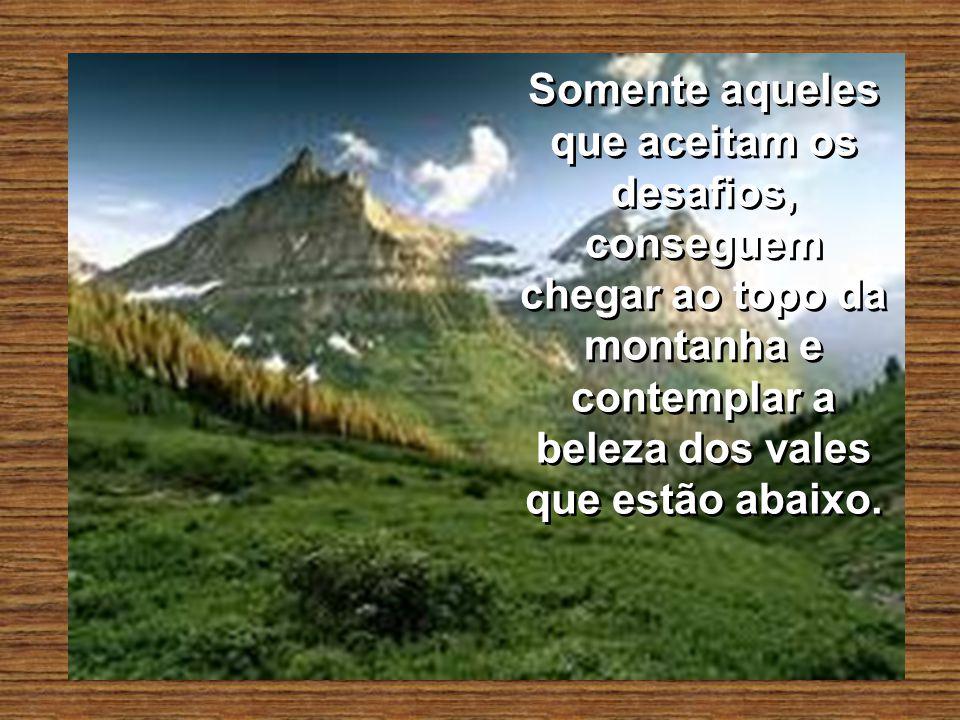Somente aqueles que aceitam os desafios, conseguem chegar ao topo da montanha e contemplar a beleza dos vales que estão abaixo.