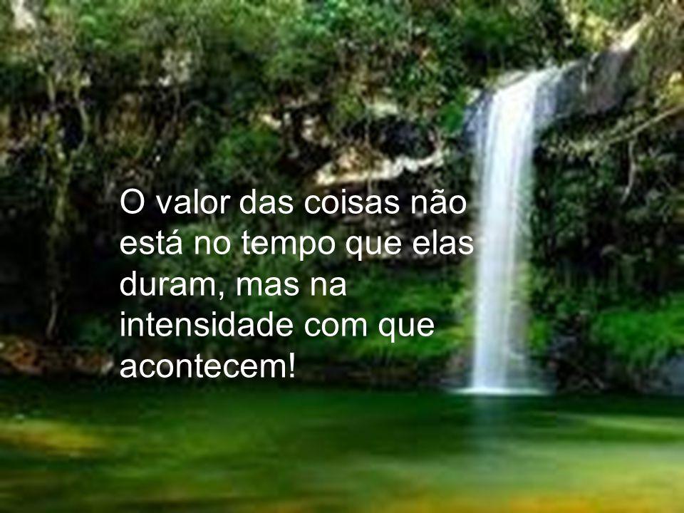 O valor das coisas não está no tempo que elas duram, mas na intensidade com que acontecem!