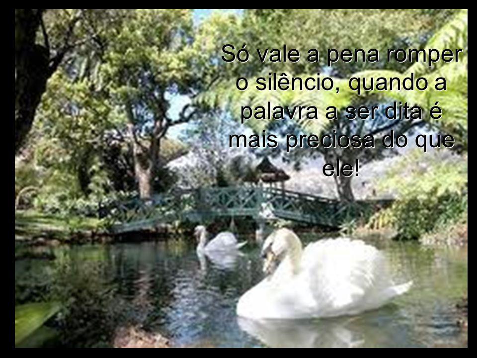 Só vale a pena romper o silêncio, quando a palavra a ser dita é mais preciosa do que ele.