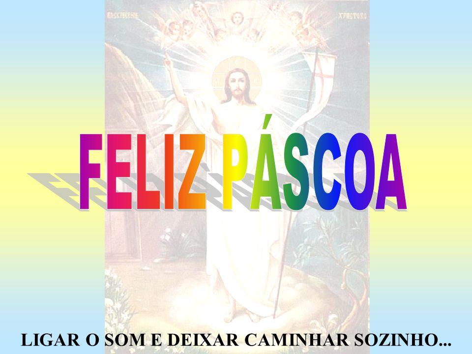 Irão desconhecer a riqueza que Deus nos deu através da Comunhão dos Santos, a oração pelas almas, as celebrações dominicais, o sentido do sofrimento, o dom da vida...