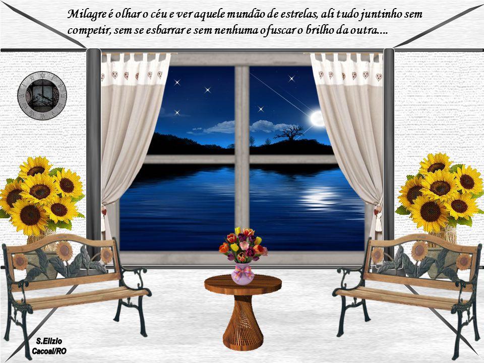 Milagre é olhar o céu e ver aquele mundão de estrelas, ali tudo juntinho sem competir, sem se esbarrar e sem nenhuma ofuscar o brilho da outra....