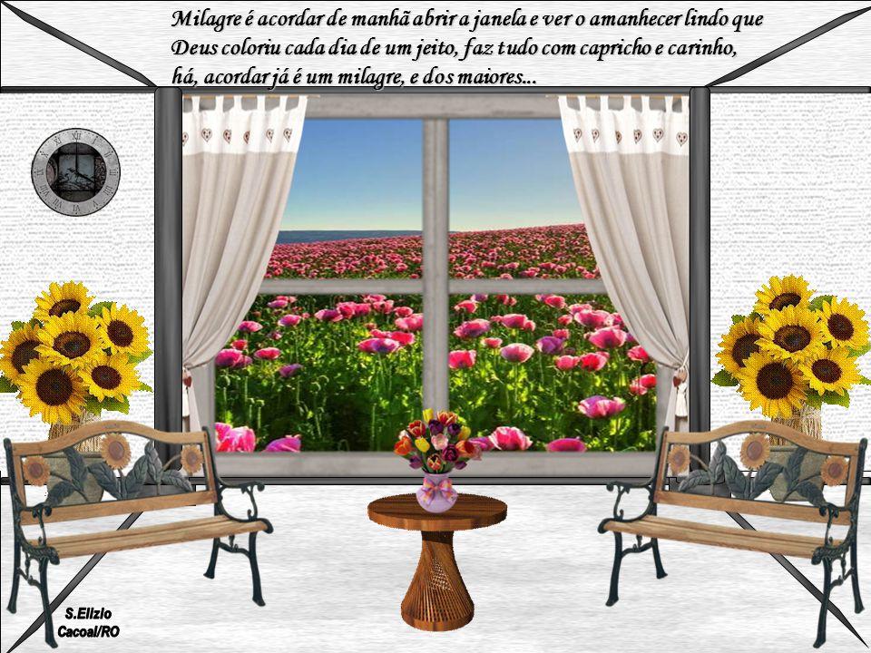 Milagre é acordar de manhã abrir a janela e ver o amanhecer lindo que Deus coloriu cada dia de um jeito, faz tudo com capricho e carinho, há, acordar já é um milagre, e dos maiores...