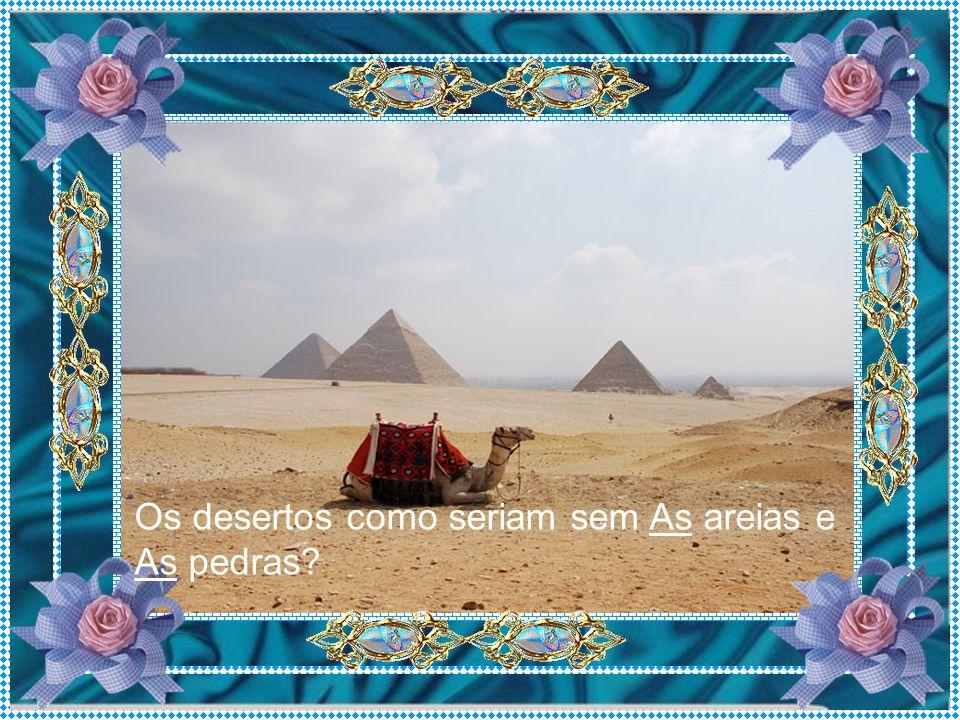 Os desertos como seriam sem As areias e As pedras?