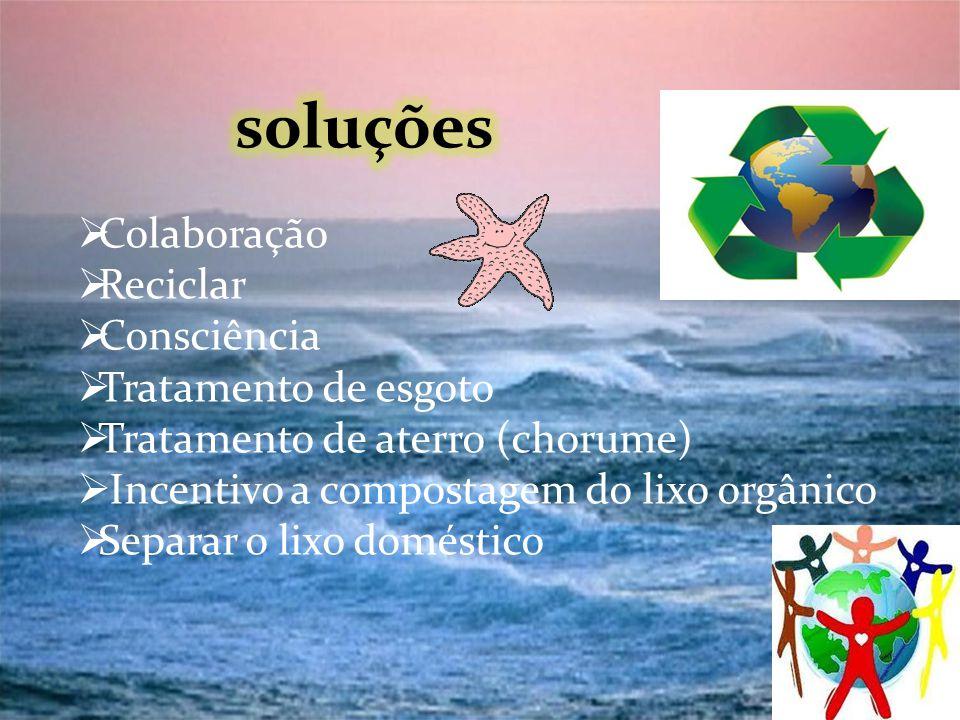 Colaboração Reciclar Consciência Tratamento de esgoto Tratamento de aterro (chorume) Incentivo a compostagem do lixo orgânico Separar o lixo doméstico