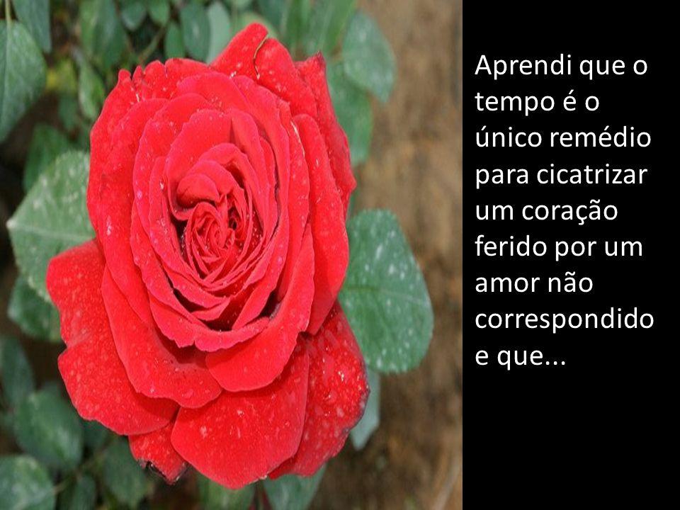 Aprendi que o tempo é o único remédio para cicatrizar um coração ferido por um amor não correspondido e que...