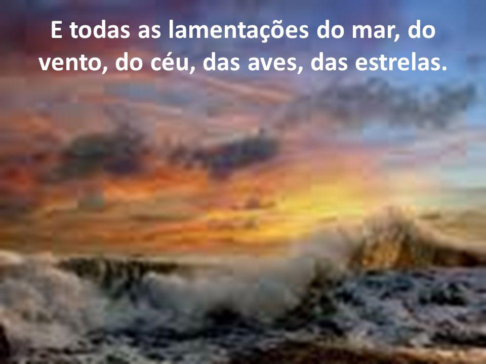 E todas as lamentações do mar, do vento, do céu, das aves, das estrelas.