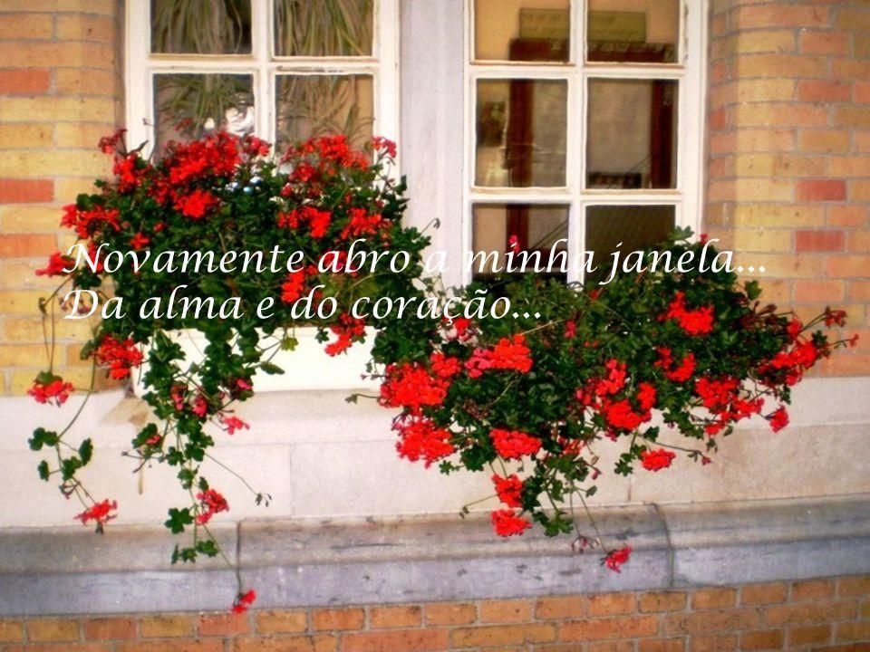 Novamente abro a minha janela... Da alma e do coração...