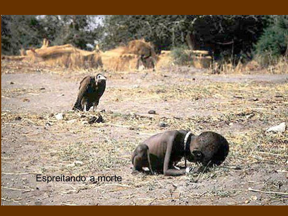 A agonia de Omayra Omayra Sanchez foi uma menina vítima do vulcão Nevado do Ruiz durante a erupção que arrasou o povoado de Armero, Colômbia em 1985.