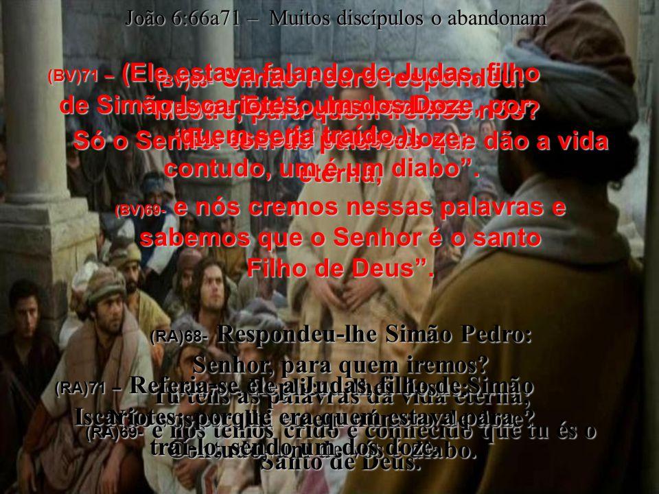 (BV)68- Simão Pedro respondeu: Mestre, para quem iremos nós.