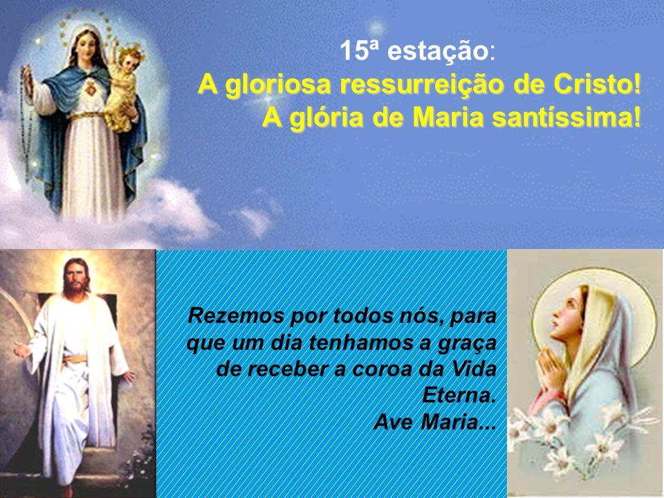 Creio na ressurreição! Maria, sepultando seu querido Filho Jesus, mantém o pensamento ligado à ressurreição. Meu Filho, meu Filho, meu queridíssimo Fi