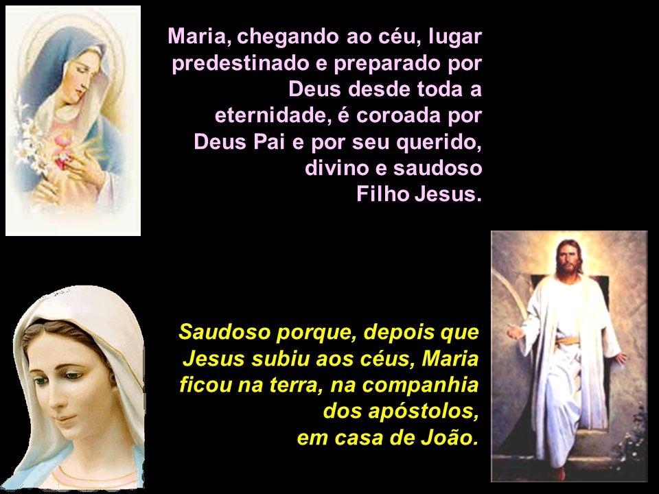 15ª estação: A gloriosa ressurreição de Cristo! A glória de Maria santíssima! Rezemos por todos nós, para que um dia tenhamos a graça de receber a cor