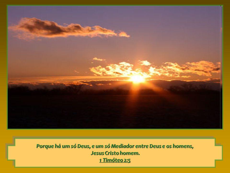 Porque há um só Deus, e um só Mediador entre Deus e os homens, Jesus Cristo homem.