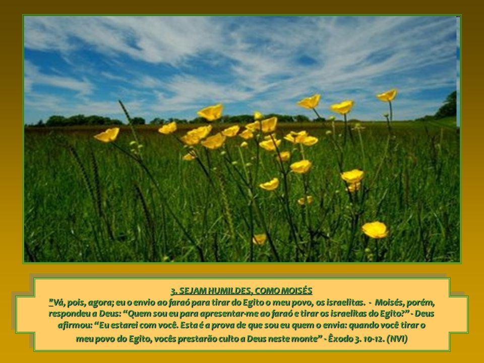 3. SEJAM HUMILDES, COMO MOISÉS