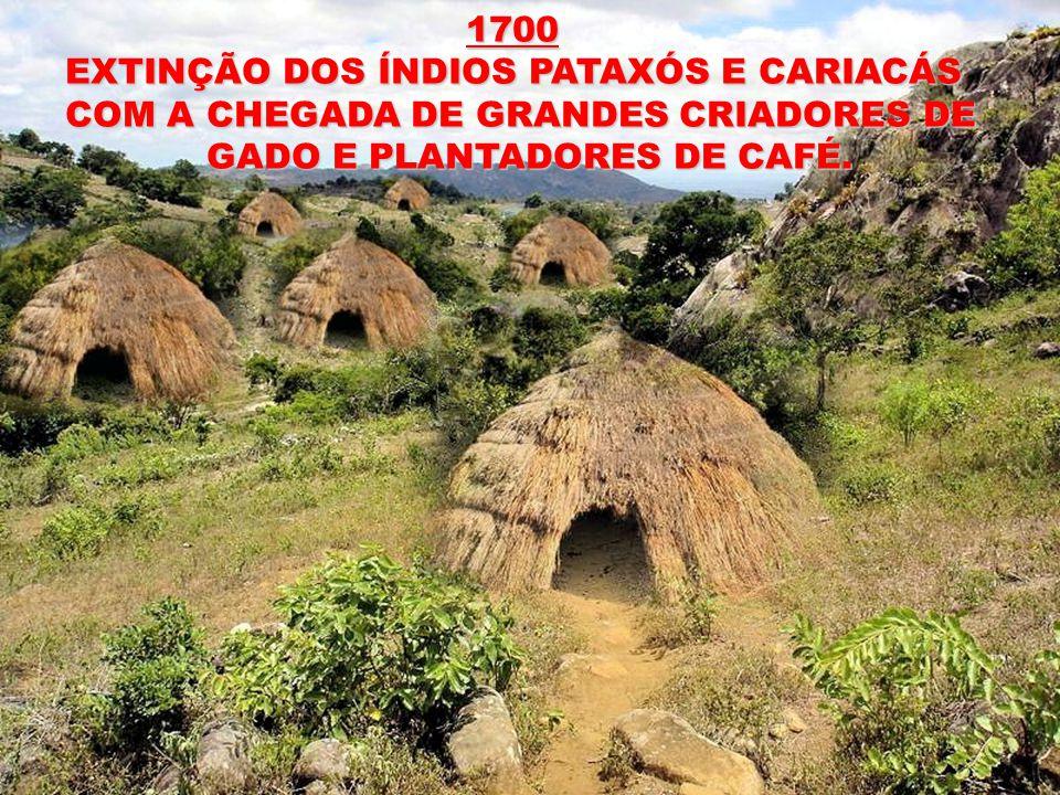 1700 1700 EXTINÇÃO DOS ÍNDIOS PATAXÓS E CARIACÁS COM A CHEGADA DE GRANDES CRIADORES DE GADO E PLANTADORES DE CAFÉ.