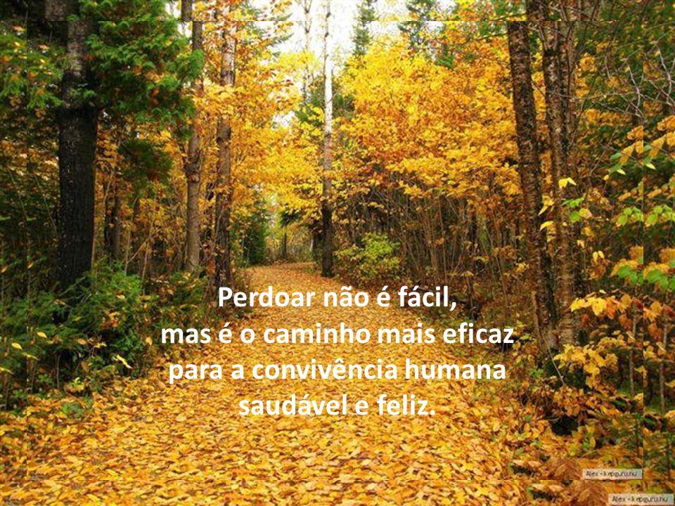 A falta de perdão torna falsa e estéril a oração.