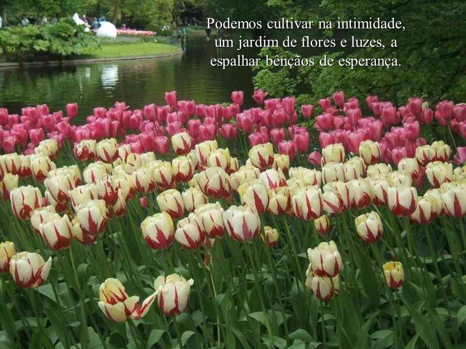 Podemos cultivar na intimidade, um jardim de flores e luzes, a espalhar bênçãos de esperança.
