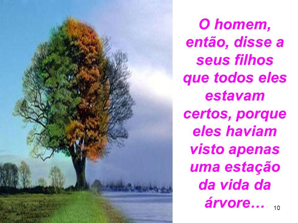 14 10 O homem, então, disse a seus filhos que todos eles estavam certos, porque eles haviam visto apenas uma estação da vida da árvore…