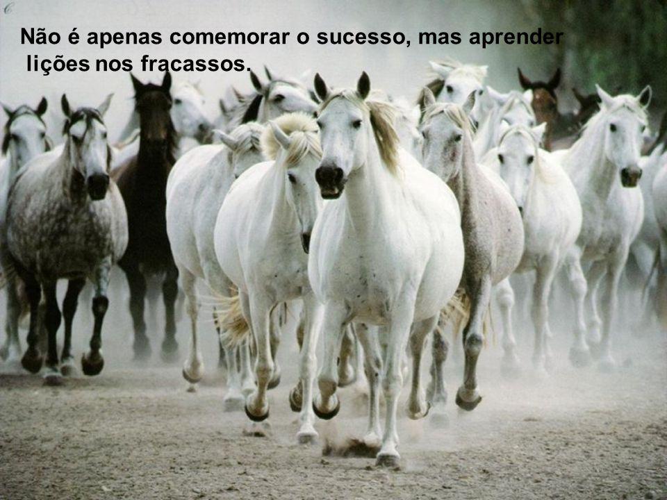 Não é apenas comemorar o sucesso, mas aprender lições nos fracassos.
